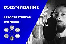 Поздравить, озвучить рекламу, стихотворение голосом Деда Мороза 35 - kwork.ru