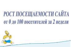 180-200 посетителей на сайт ежедневно в течение месяца 39 - kwork.ru
