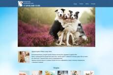 Сделаю сайт под ключ 23 - kwork.ru