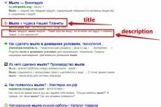 Внутренняя оптимизация сайта на DLE 23 - kwork.ru