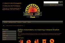 сделаю правки сайта на Wordpress 3 - kwork.ru