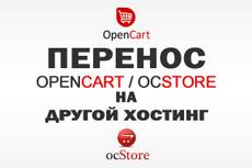 Перенос сайта  на  хостинг 20 - kwork.ru