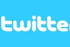 1700 подписчиков в ваш аккаунт Twitter 20 - kwork.ru