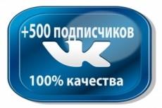 300 подписчиков на паблик Вконтакте, без ботов и программ 14 - kwork.ru