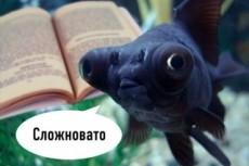 Качественно переведу тексты различных тематик с/на итальянский язык 17 - kwork.ru