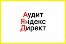 Аудит Вашего Я. Директ и сайта по 175 пунктам пригодности 21 - kwork.ru