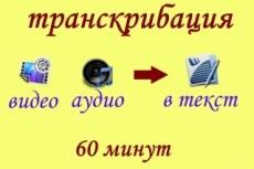 Расшифровка видео и аудио файлов 17 - kwork.ru