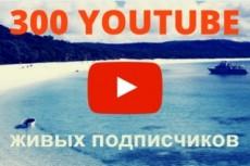 Переведу с английского на русский язык Premium Wordpress тему 24 - kwork.ru