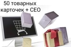 Наполнение сайта InSales товаром или любым контентом 36 - kwork.ru