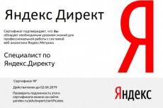 Сертификат Яндекс Директ. Помощь в получении, сдаче экзамена 16 - kwork.ru