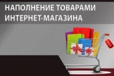 Ручное наполнение интернет-магазина товаром, контентом 10 - kwork.ru