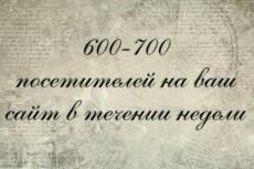 Организую трафик на сайт, интернет-магазин, профиль (группу соц.сети) 3 - kwork.ru