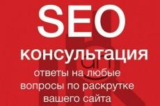 Консультация по поисковому продвижению 12 - kwork.ru