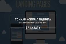 Копирование и настройка Landing Page + настройка работы форм 15 - kwork.ru