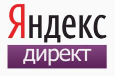 Настрою Рекламные кампании в Яндекс Директ 14 - kwork.ru
