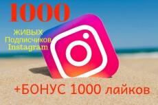 Акция +5500 подписчиков на instagram + 3000 лайков 22 - kwork.ru