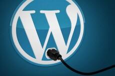 поправлю шаблон на WordPress 3 - kwork.ru