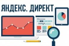 Полная настройка Яндекс Директ. Сертифицированный специалист 13 - kwork.ru