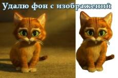 переведу текст ENG - RUS, UA; RUS-UA; UA-RUS 3 - kwork.ru
