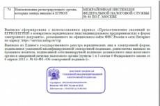 Заявление на регистрацию ИП и открытие рас. счета в тинькофф в подарок 29 - kwork.ru