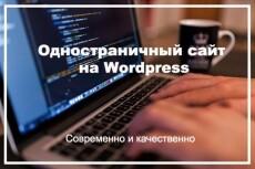 Создам одностраничный сайт на Wordpress 13 - kwork.ru