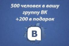 За день 100 репостов с живыми людьми в Вконтакте 3 - kwork.ru
