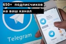 Правильно настрою контекстную кампанию в рекламной сети Яндекс РСЯ 9 - kwork.ru