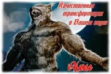 уберу фон любой сложности с 10 фотографий 5 - kwork.ru