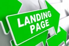 Сделаю копию Landing Page и размещу ее на хостинге 14 - kwork.ru