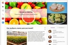Размещу вашу статью с ссылкой на жирнющих сайтах 8 - kwork.ru