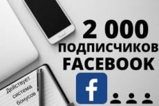 Добавлю 3000 подписчиков на паблик FanPage в Facebook 14 - kwork.ru