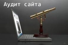 Найду и вылечу слабые места вашей рекламы в Яндекс.Директе 7 - kwork.ru