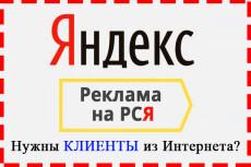 Специалист по интернет рекламе в РСЯ 7 - kwork.ru