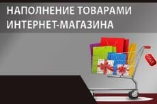 Наполню вручную интернет-магазин 100 товарами 6 - kwork.ru