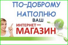 Заполнение интернет-магазина товарами,100 товаров за один день 8 - kwork.ru