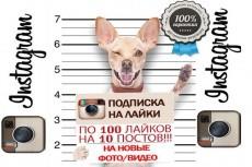 Подписчики  Instagram 16 - kwork.ru