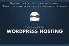 Создам сайт на WP с Вашей темой + 1 месяц хостинга + бонусы 5 - kwork.ru