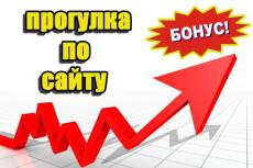 Привлеку 20000 уникальных посетителей на сайт 29 - kwork.ru