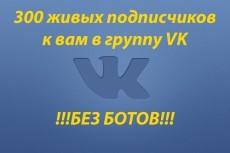 раскрутка аккаунта Instagram месяц. Только живые подписчики. Целевая аудитория 4 - kwork.ru