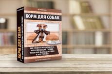 Сделаю вам 3D обложку книги, курса или инфопродукта в 3D 9 - kwork.ru