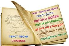 Переделаю или напишу текст песни, любой жанр на любую музыку 10 - kwork.ru