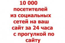 14000 уникальных посещений на ваш сайт в течение недели 11 - kwork.ru