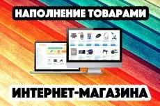 Наполнение сайта, добавление товаров в интернет-магазин 19 - kwork.ru