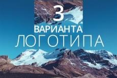 создам 3 логотипа 10 - kwork.ru