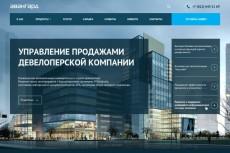 легкий Landing Page (посадочную страницу) 14 - kwork.ru