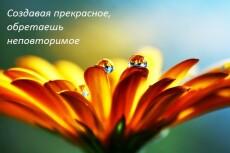 качественно выполню работу по написанию информационных статей до 5000 символов 3 - kwork.ru