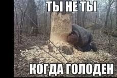 Консультации по законам РФ 4 - kwork.ru