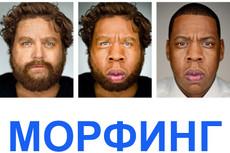 Сделаю живые обои на iPhone 12 - kwork.ru