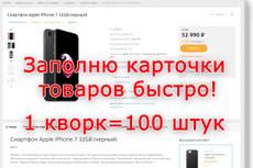Наполнение сайта InSales товаром или любым контентом 32 - kwork.ru