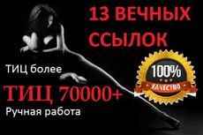 10 ссылок с ТИЦ 100 000. Ручная работа 3 - kwork.ru